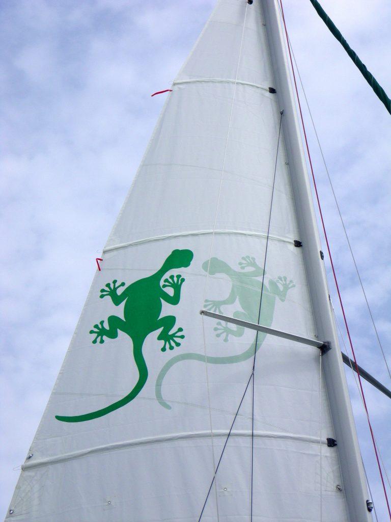 12 Lézards sur voile au vent.JPG