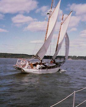 under sail from stern.jpg